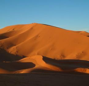 desert petita